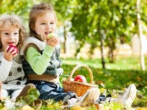 apples, basket, Kids, Meadow