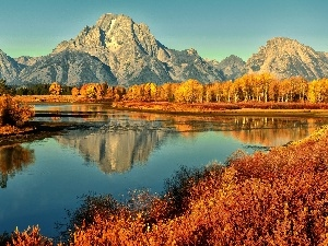 autumn, Mountains, River, forest