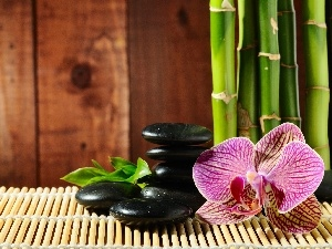 bamboo, mat, orchid, Stones