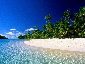Beaches, Palms, Cook Islands