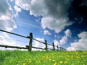 clouds, Hurdle, Meadow, Flowers