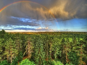 clouds, Great Rainbows, woods, medows