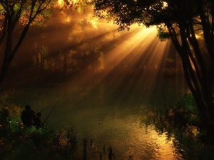 fishing, forest Lake, rays, sun
