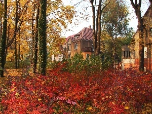 Park, Leaf, color, Houses, Autumn