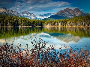 lake, Mountains, reflection, woods
