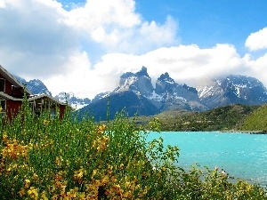 River, Home, Wildflowers, Mountains, Flowers