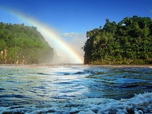 River, viewes, Great Rainbows, trees