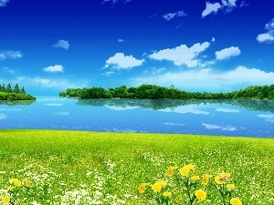 Sky, Meadow, water
