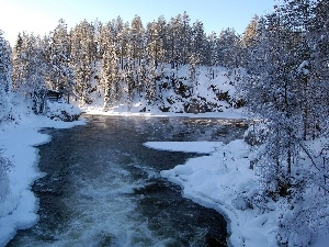 snow, viewes, River, trees
