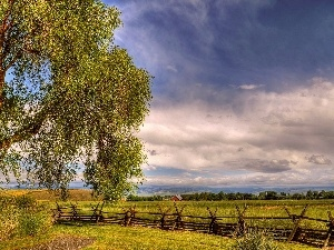 trees, fence, medows, HDR, field