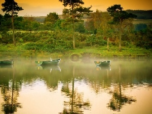 viewes, boats, trees, lake, west, Fog