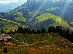Way, Sheepfarm, Mountains, pastures
