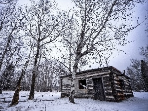 Wooden, Cottage, trees, viewes, winter