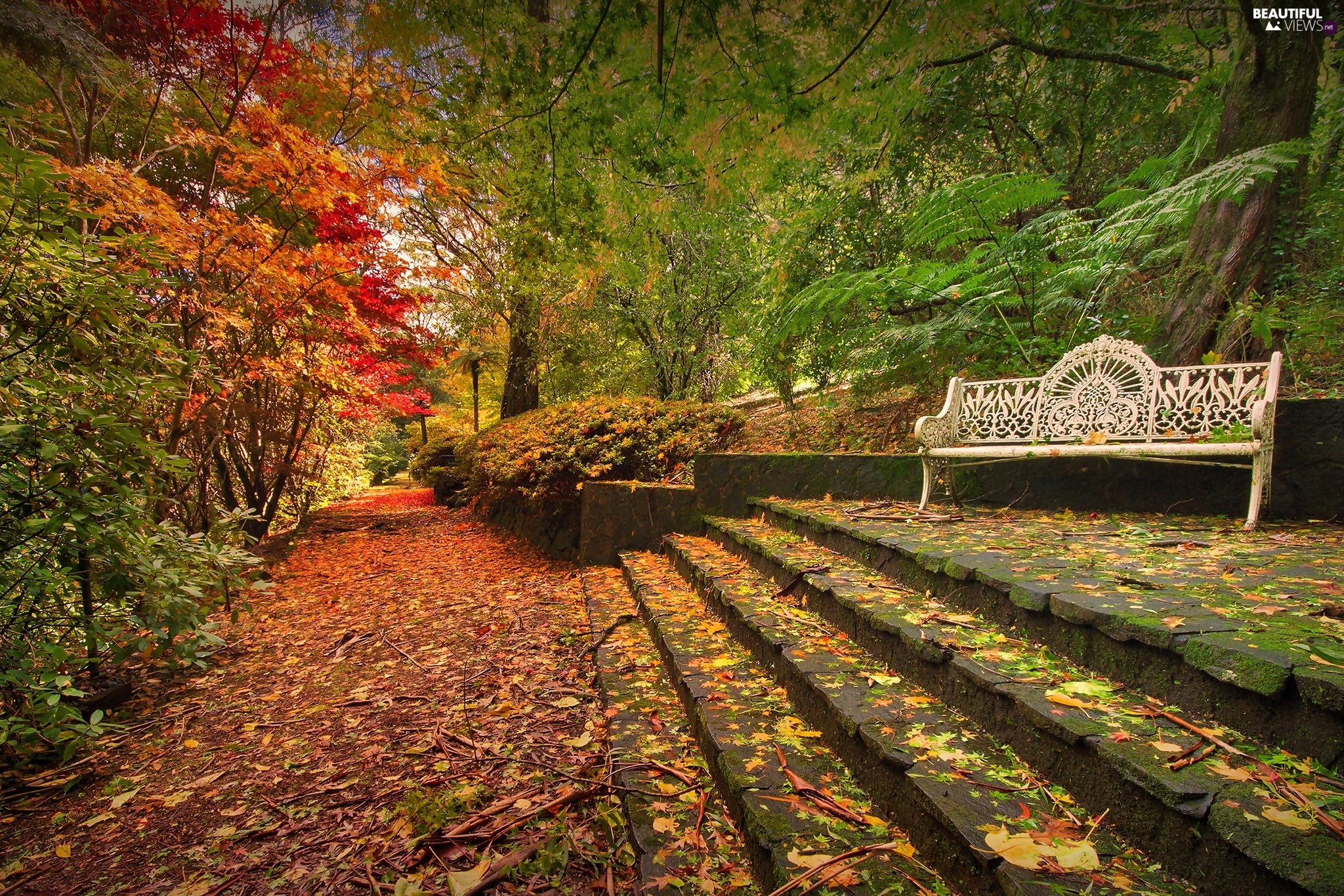 Park, Stairs, autumn, Bench