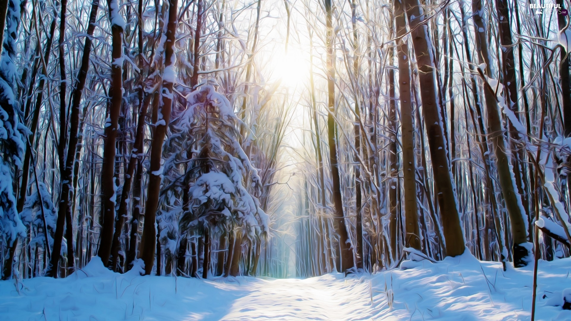 light breaking through sky, Fractalius, forest, Way, winter
