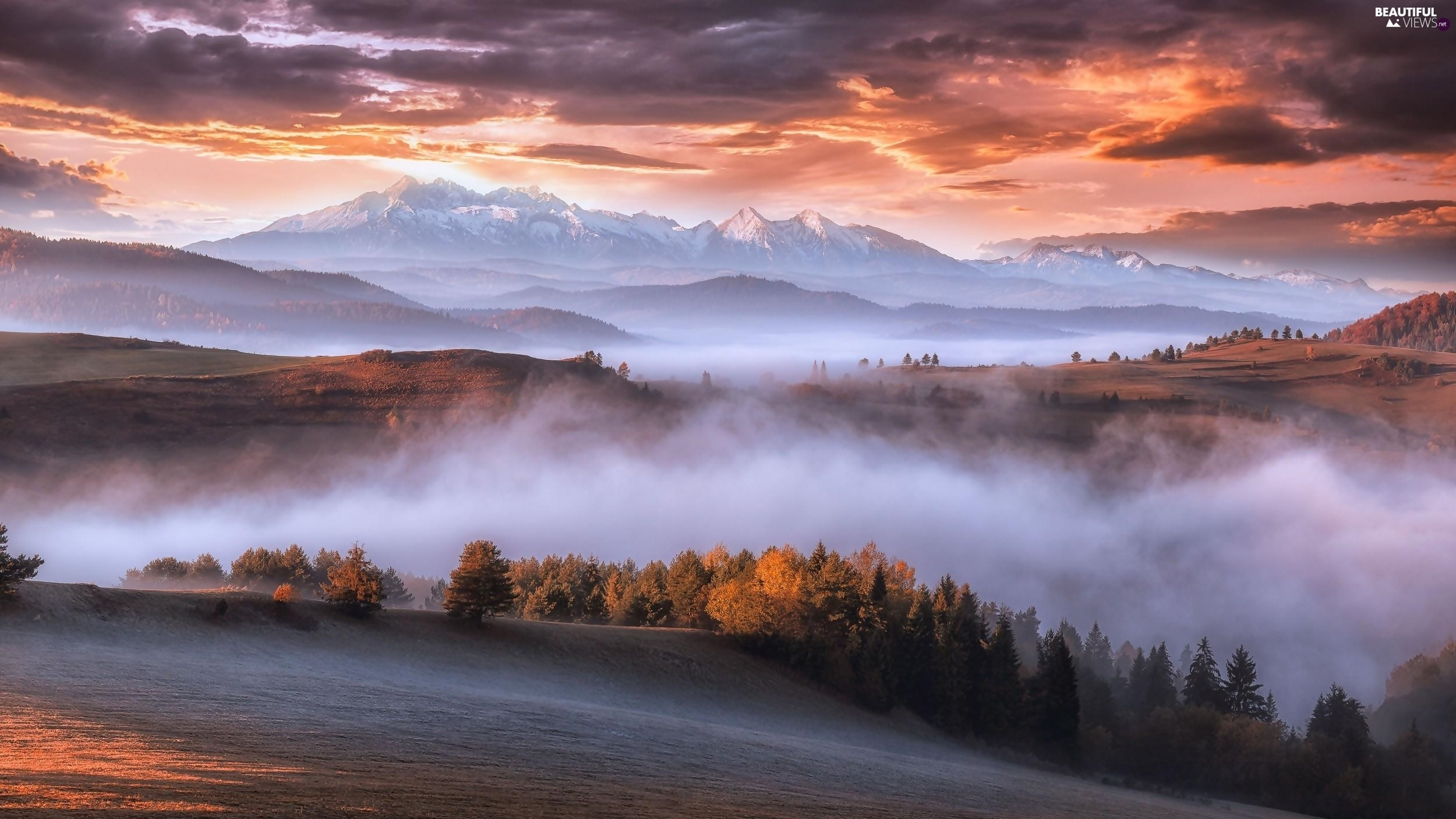 clouds, Fog, Carpathian Mountains, Sunrise, woods
