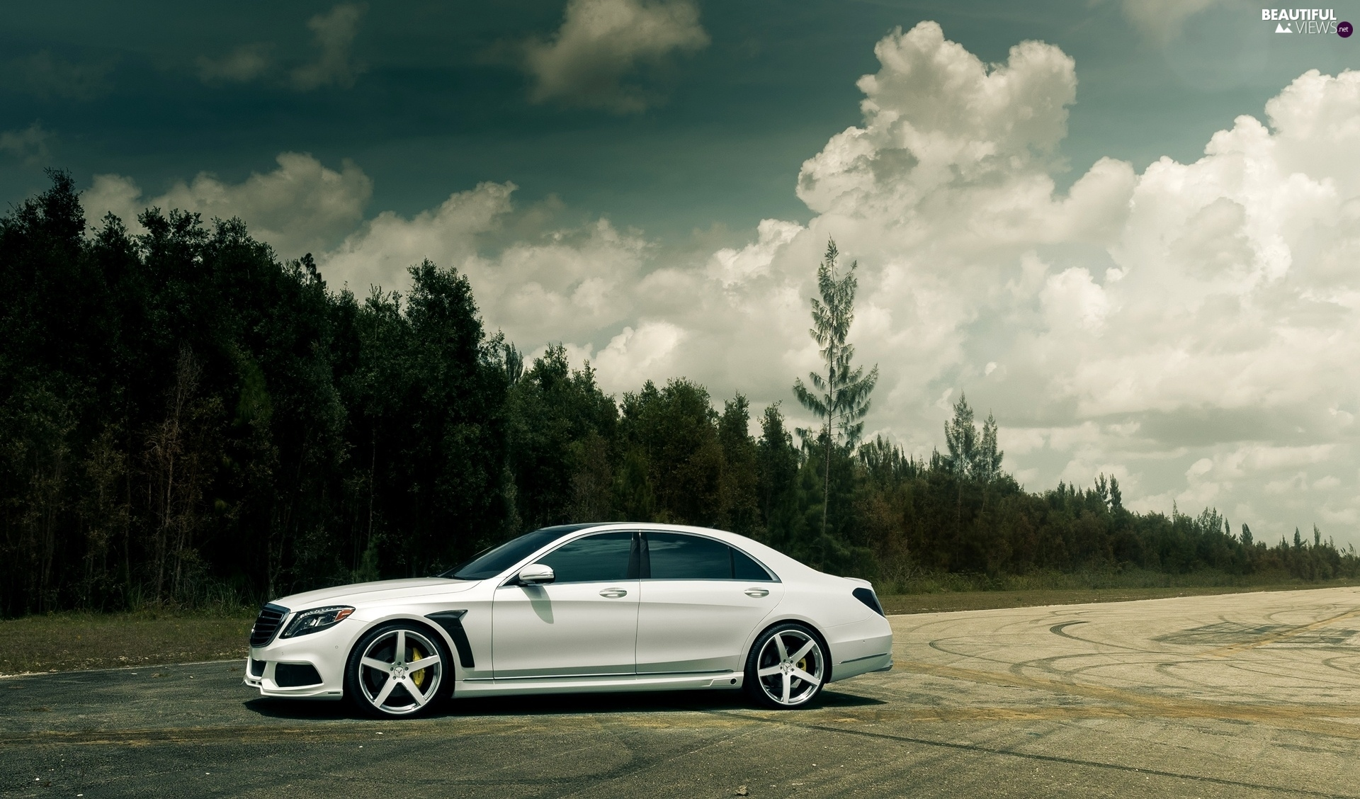 Forest clouds mercedes benz white beautiful views for Mercedes benz lake forest