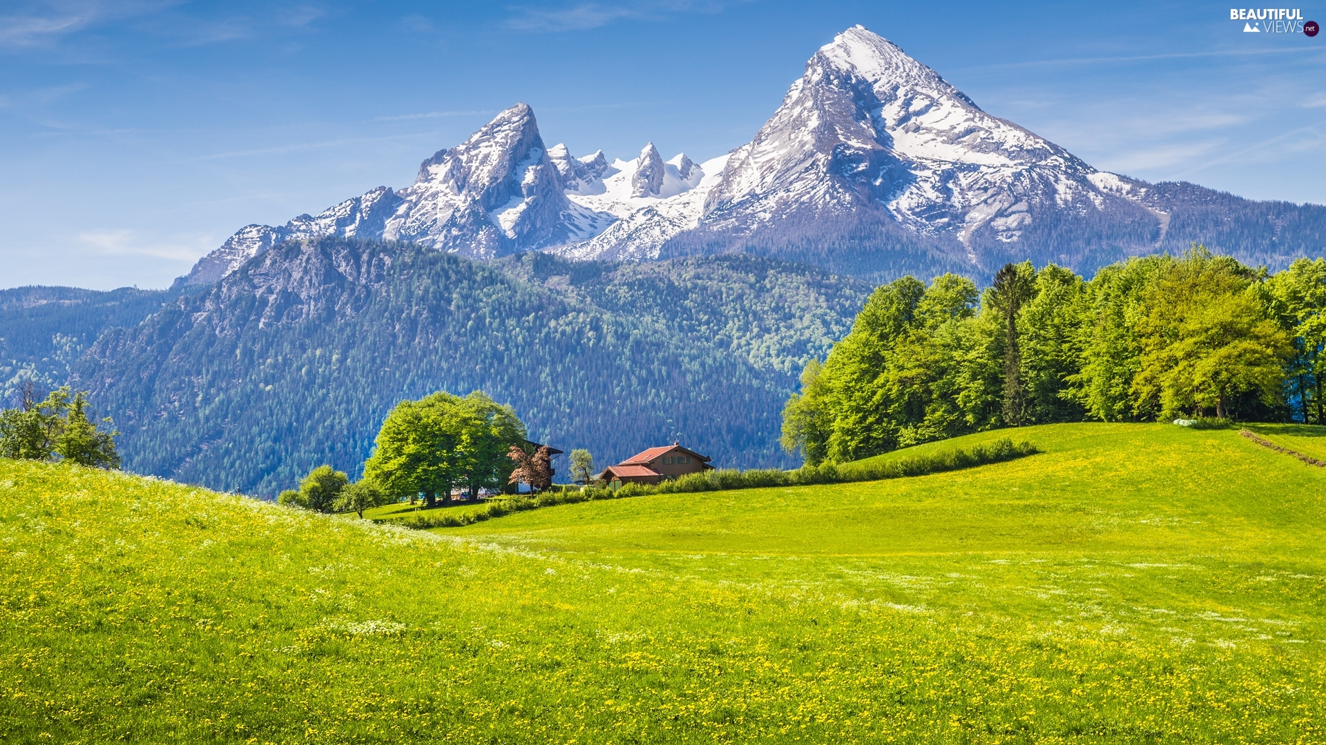 Bavaria, Germany, house, forest, viewes, Alps Mountains, Berchtesgaden National Park, trees