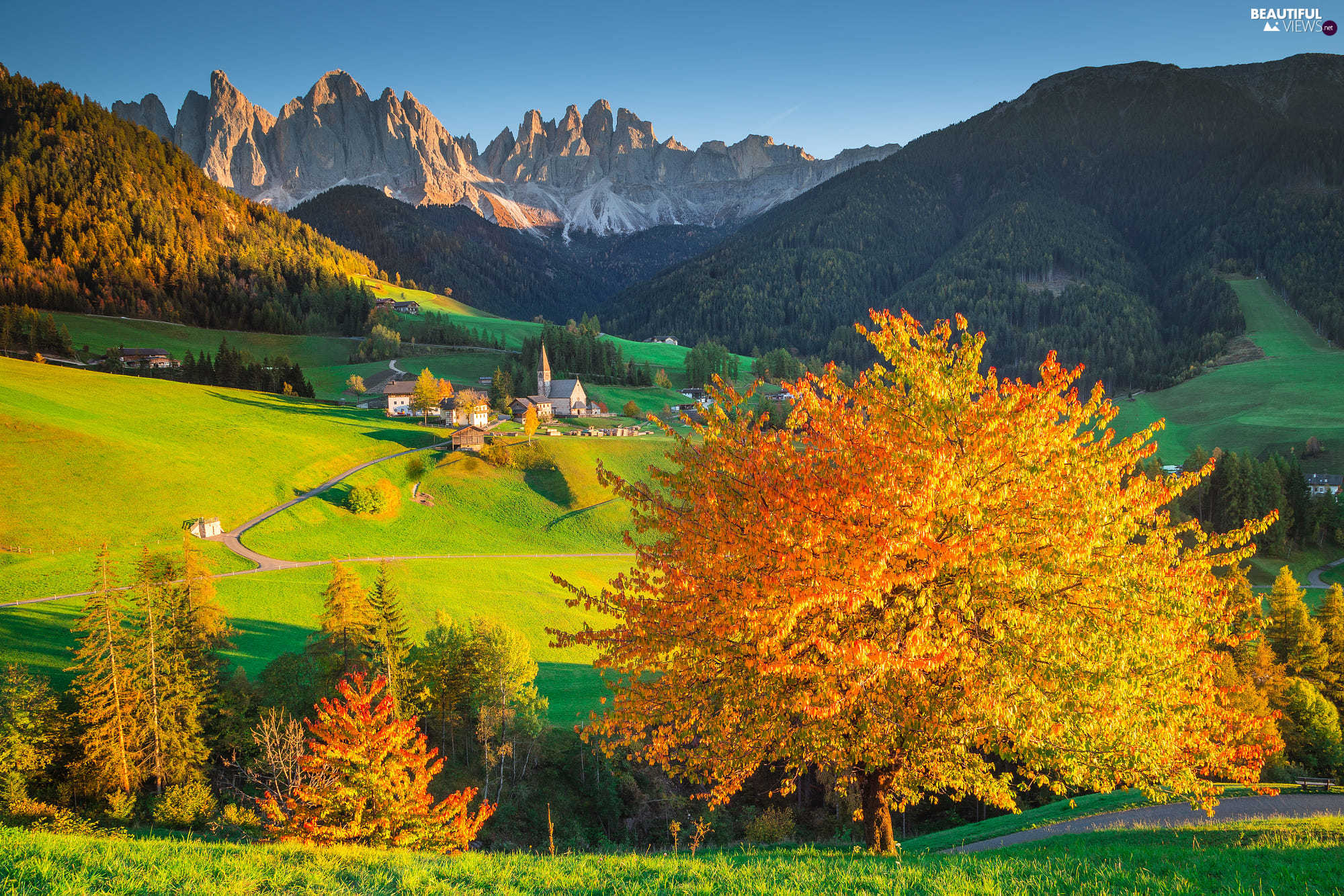 Mountains, viewes, woods, trees, Massif Odle, autumn, Dolomites, Italy, Val di Funes Valley, Church, Village of Santa Maddalena