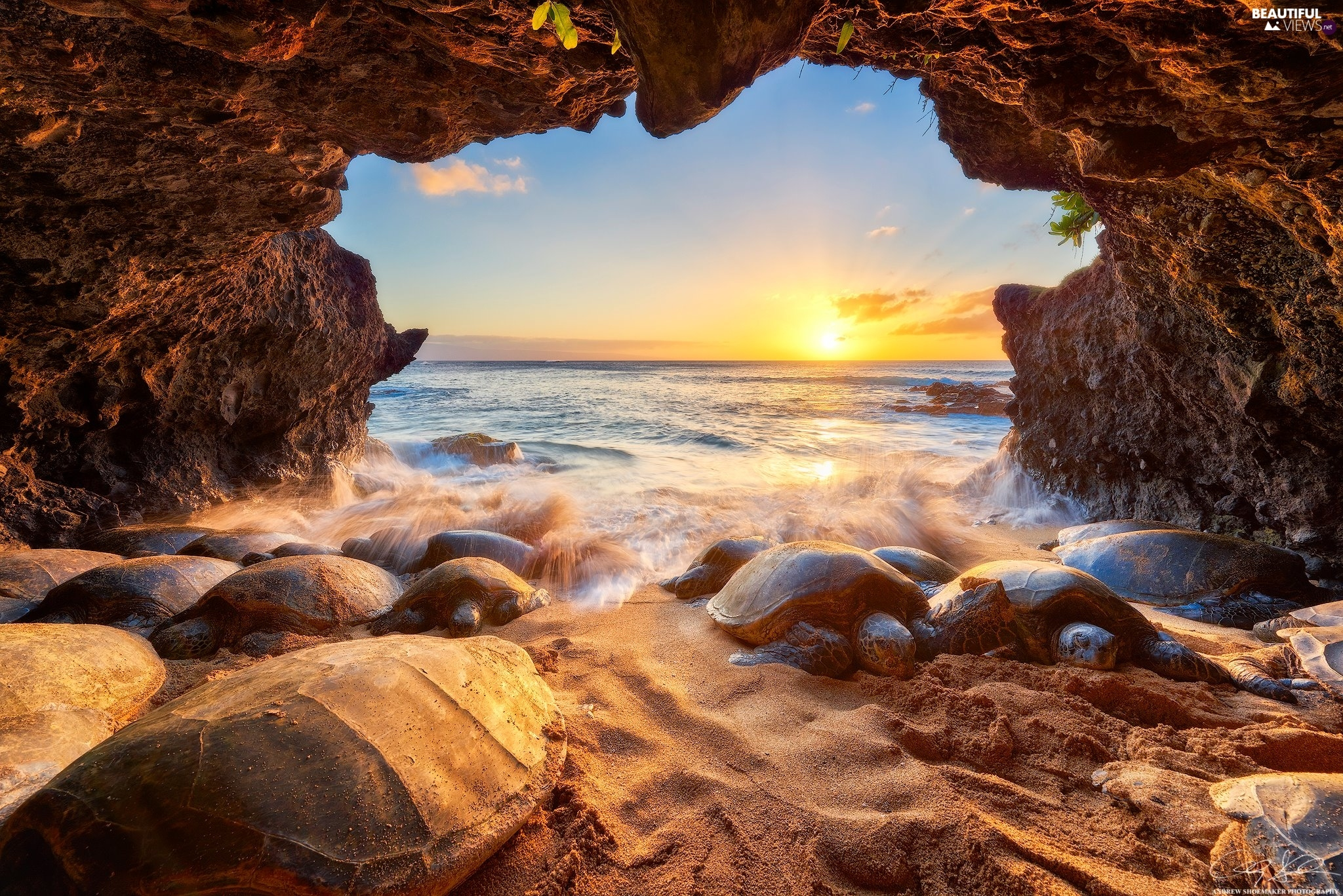 Sea Turtles, cave, Aloha State Hawaje, Great Sunsets, Pacific Ocean
