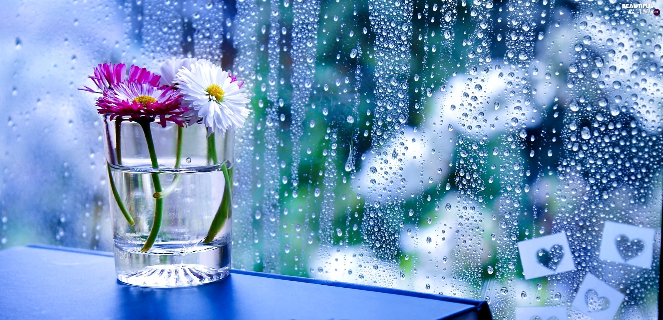 Flowers in the rain wallpaper flowers in the rain wallpaper photo 6 thecheapjerseys Gallery