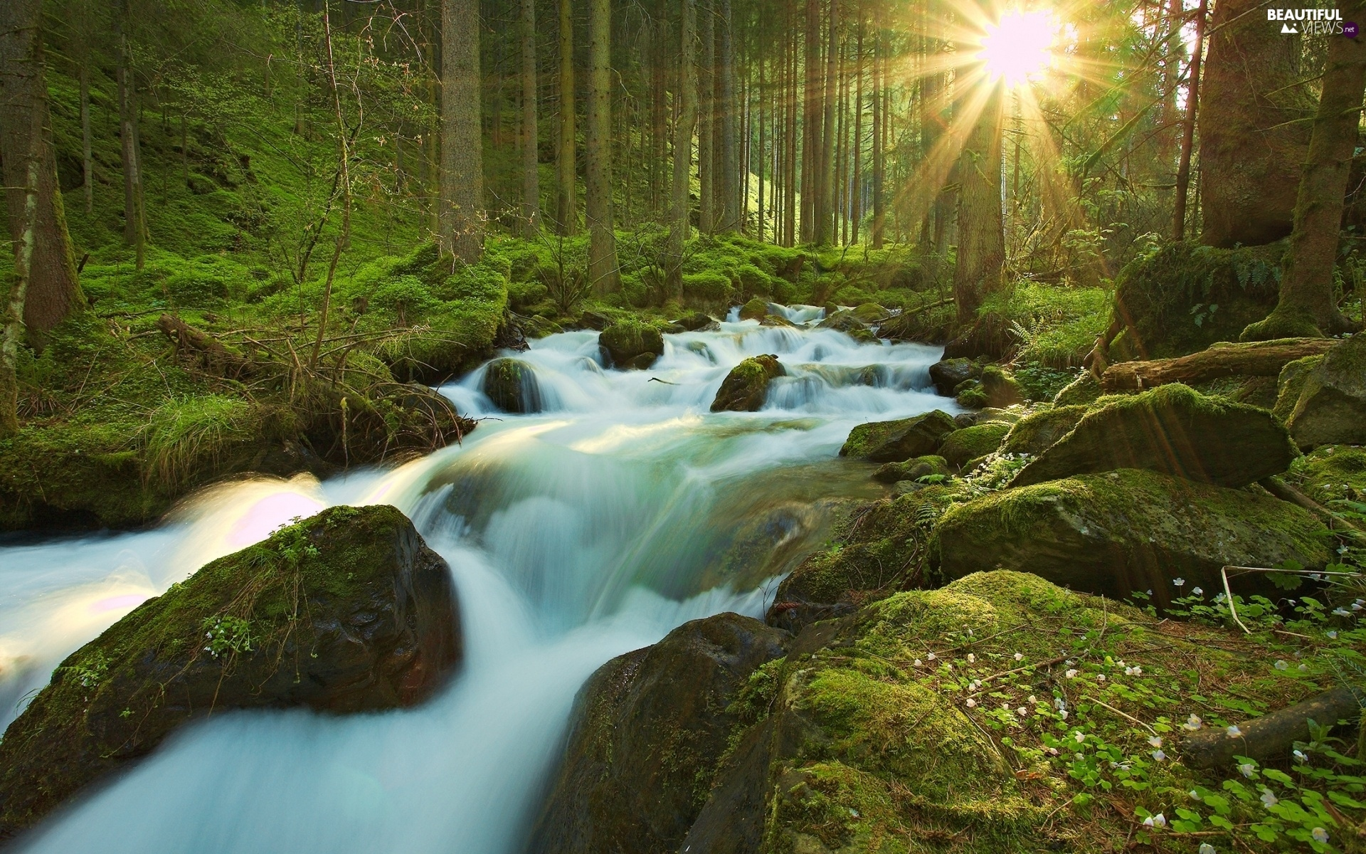 Waterfall Rays Of The Sun River Forest Beautiful