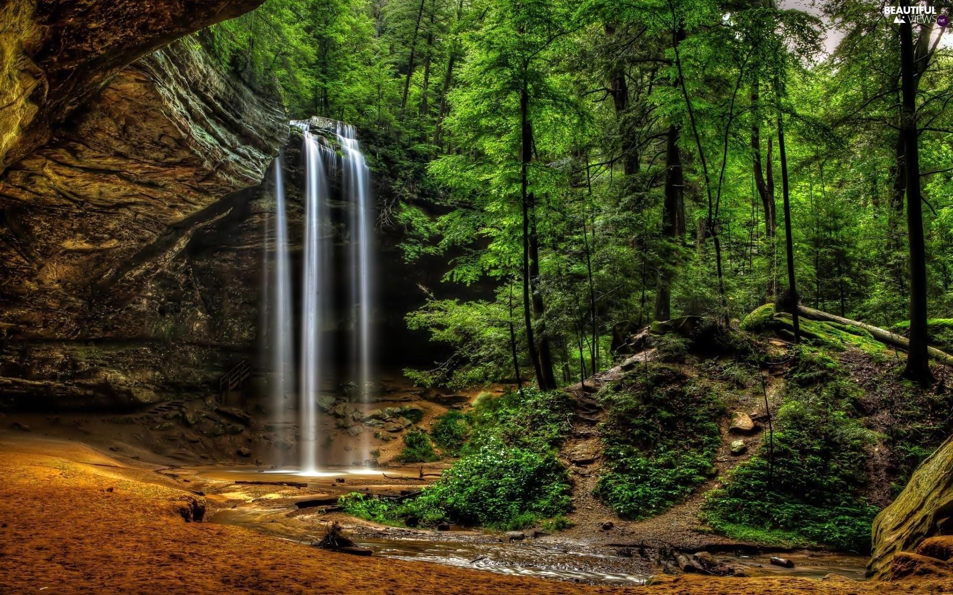 Forerunner's Glen River-waterfall-forest-rocks-1