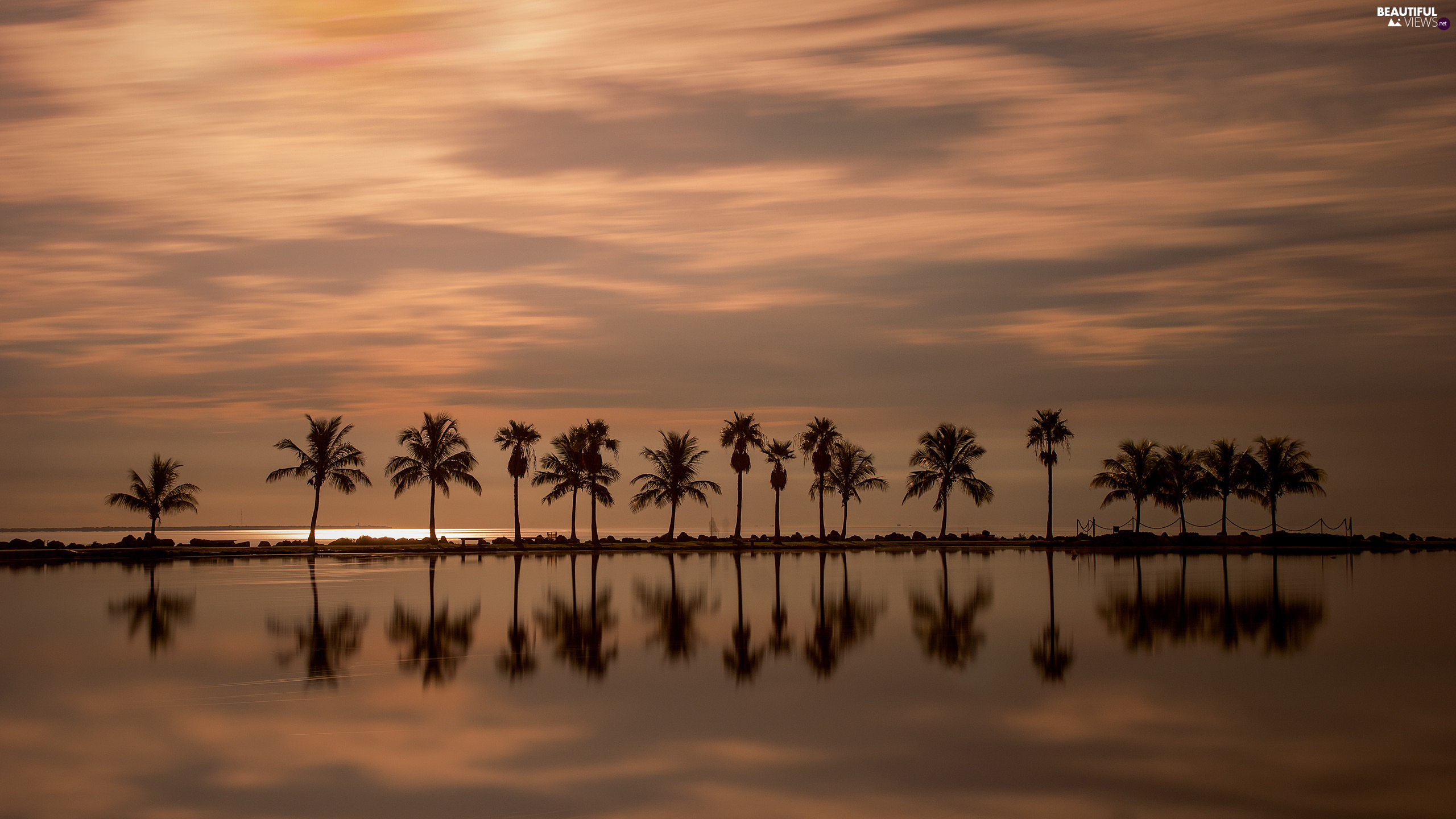 sea, Great Sunsets, Floryda, Palms, Miami