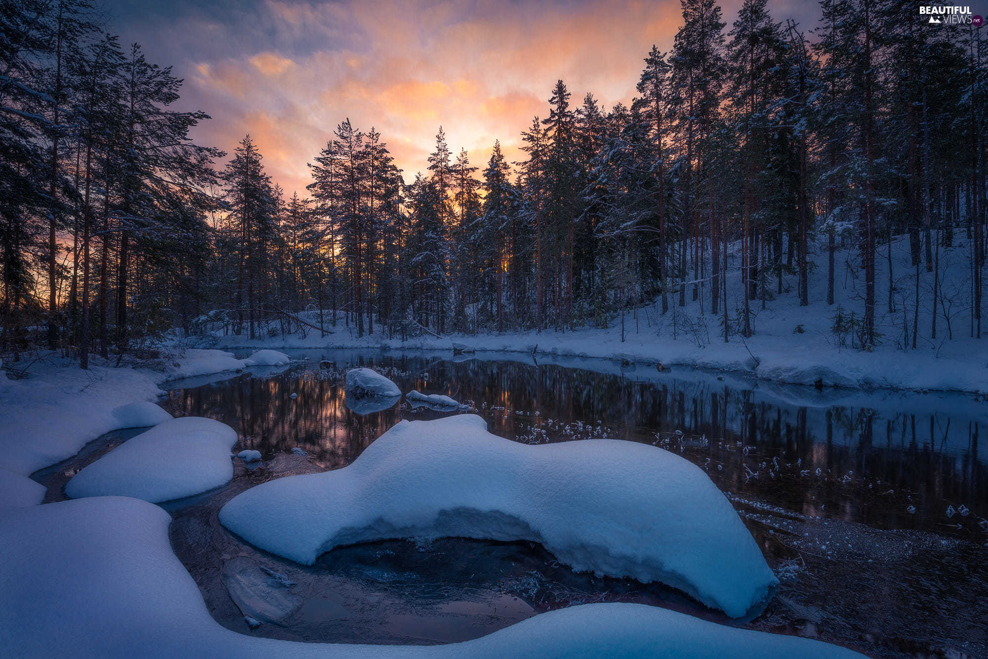 viewes, Ringerike Municipality, snow, trees, Norway, winter, lake