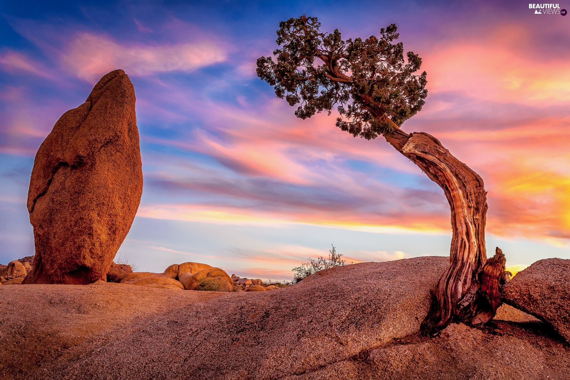 Joshua Tree National Park, The United States, trees, Great Sunsets, rocks, California