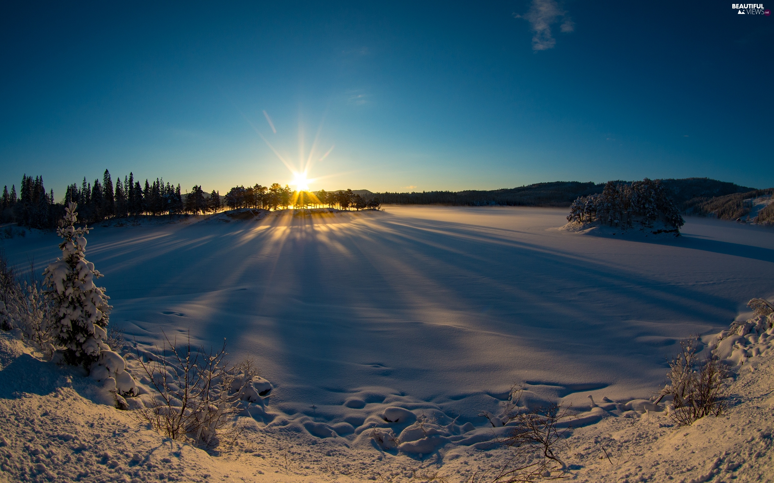 viewes, trees, winter, rays of the Sun, snow