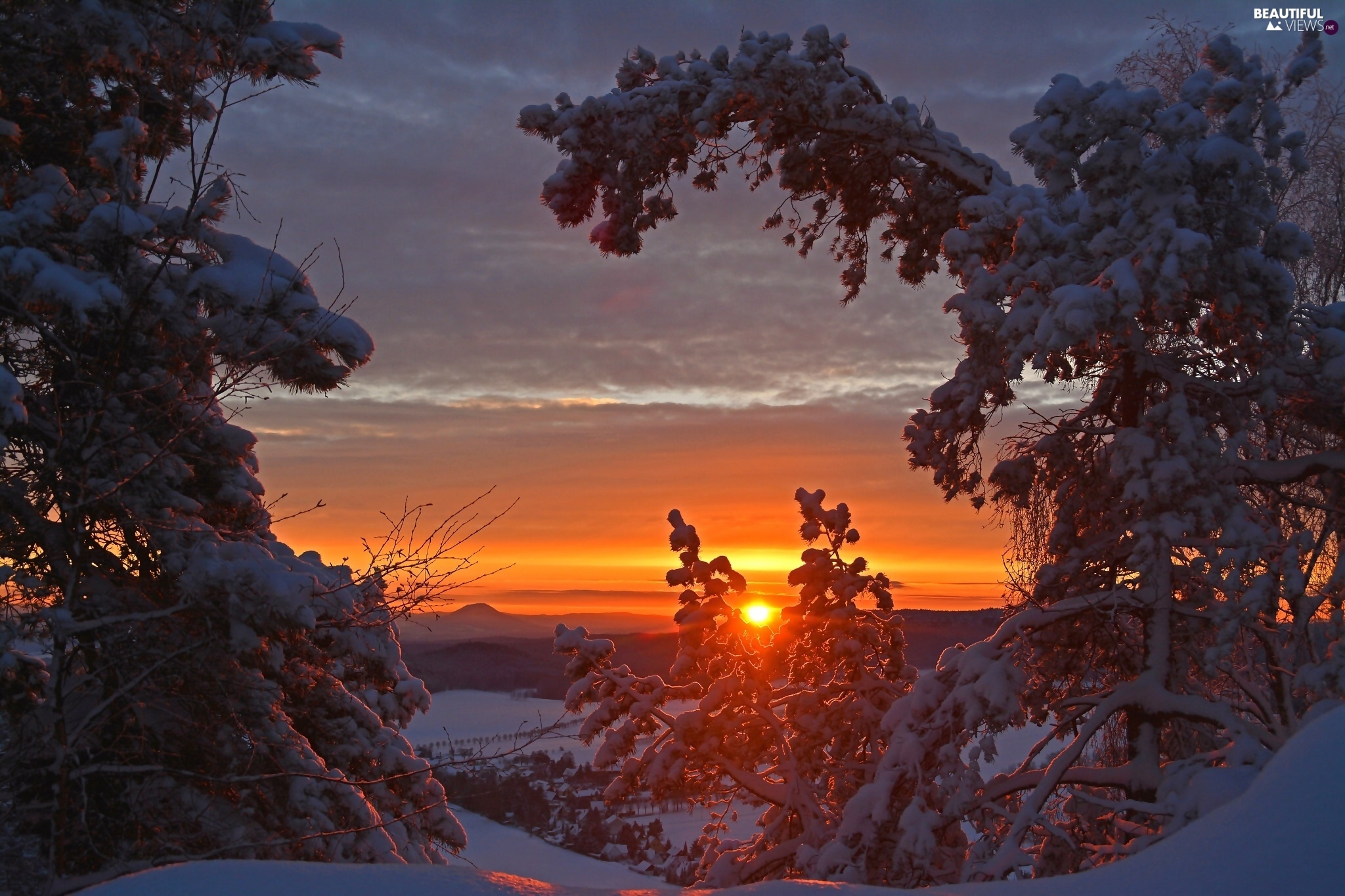 Great Sunsets, viewes, winter, trees