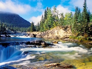 trees, waterfall, Alberta, Canada, viewes, River