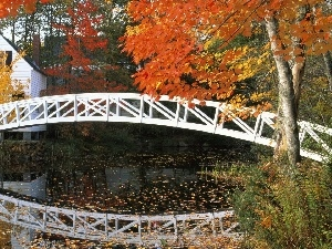 River, Home, autumn, bridge