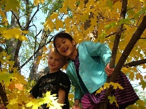 autumn, Kids, trees