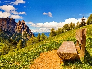 Bench, Mountains, Meadow