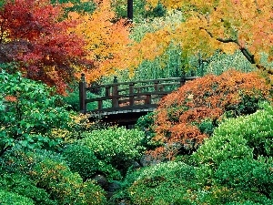Bush, Garden, viewes, bridges, trees, green ones