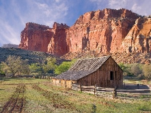 farm, Horse, canyon, pasture
