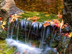 cascade, Leaf, water