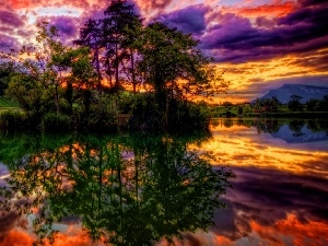 viewes, lake, clouds, reflection, Sky, trees