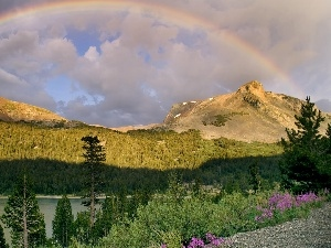 clouds, Mountains, trees, viewes, water, Great Rainbows