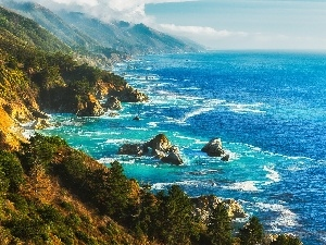 sea, Mountains, Coast, forested
