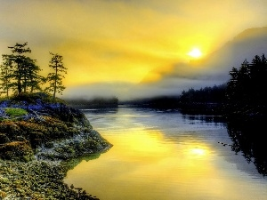 woods, River, east, sun, Fog, Mountains