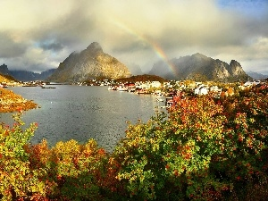 flourishing, Bush, lake, Great Rainbows, Mountains