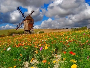 Flowers, Meadow, Windmill