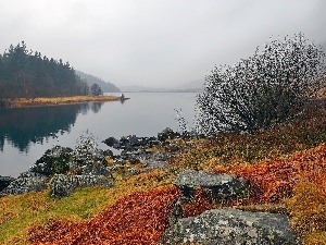 woods, lake, Fog, autumn, Mountains, Stones