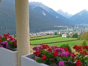 pillar, View, geraniums, Mountains