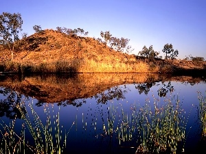 Australia, hill, grass, water