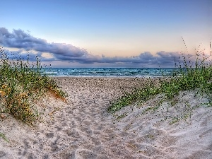 clouds, Beaches, grass, sea
