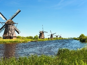 grass, Windmills, River
